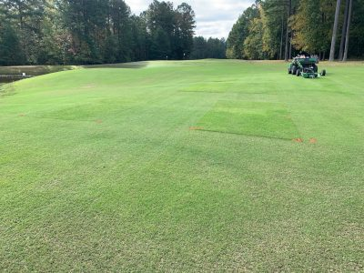 At Independence Golf Club in Richmond, there's a unique partnership that allows Virginia Tech researchers to conduct research on a live golf course. Pictured above is research on the impact of mowing height on grasses.